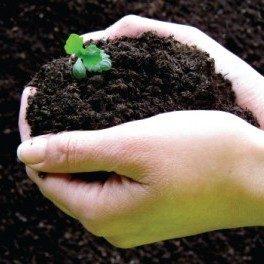 Compost UK